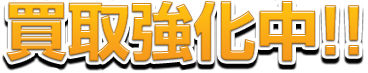 kenzaiphoto11